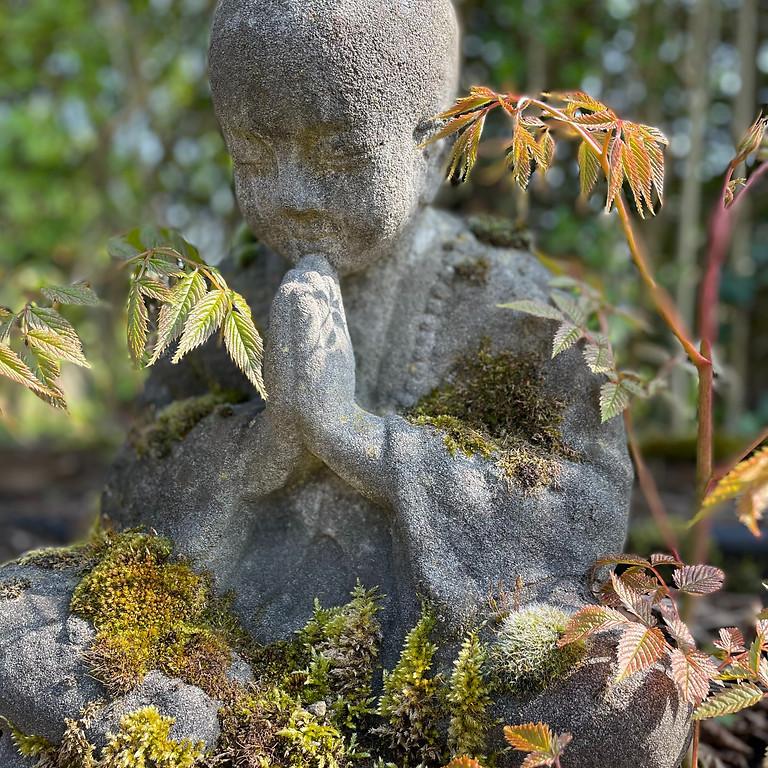 Yoga, Meditatie & RETREATS