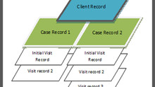 How CISWINplus Organizes Clients, Cases, and Visits.