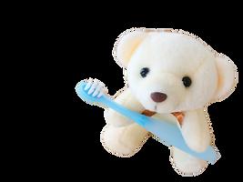 歯ブラシをもつクマ