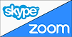 skype zoom icon.png