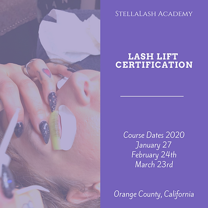 Lash Lift  1 Day Certification Course