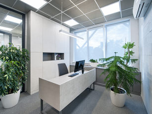 Office room with plants.jpg