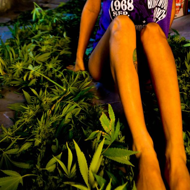 Zoey Garden of Weeden Goddess-42.jpg