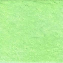 WP344 Verde Acido