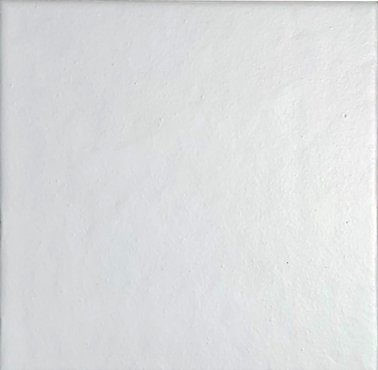 WP300 Bianco Opaco