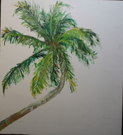 Natalies palm tree 2020