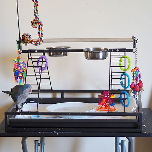 Parrot Playstand/Playgym - Medium Parrots