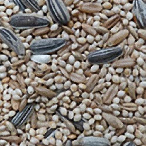 2kg Peachface Lovebird Seed Mix - Avigrain
