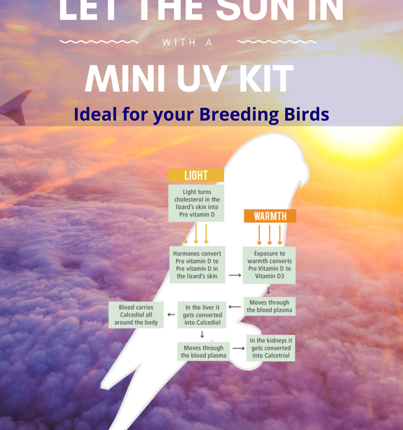 Micro Bird Uv 8Watt Kit Page 1