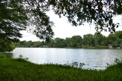 Lake Dunlap Back Area