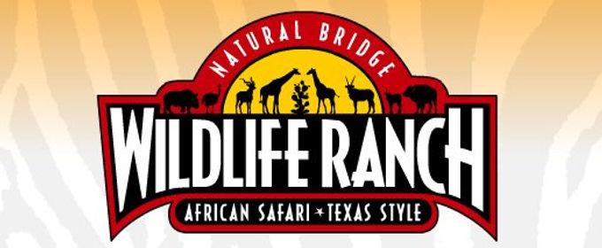 Natural Bridge Wildlife