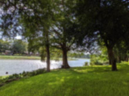 Lake Dunlap 5.jpg