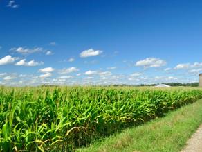Farm Bill Impact  | February  2014
