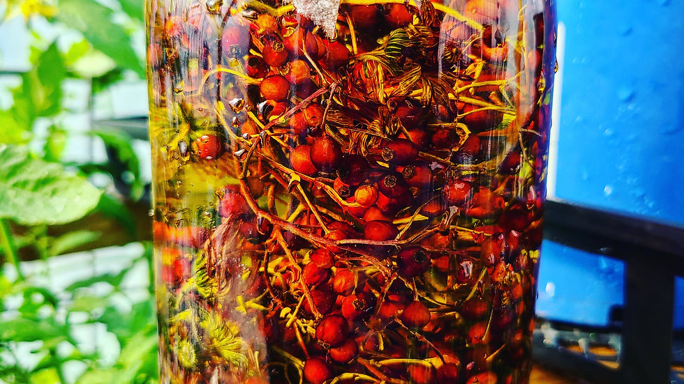 Rosehip + Calendula Oil