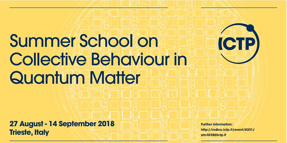 """Summer School on """"Collective Behavior in Quantum Matter"""" (8792)"""