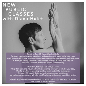 New Public Classes with Diana Hulet