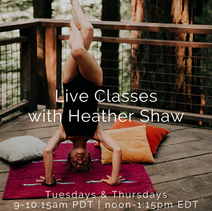 Live Classes with Heather Shaw
