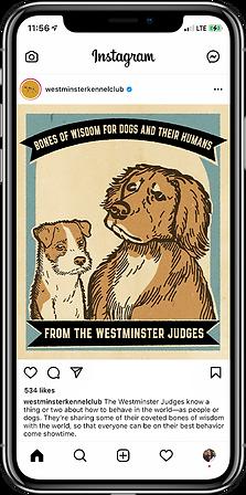 Westminster IG Phone 1.png