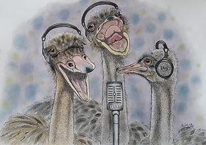 struisvogels kalender.jpg