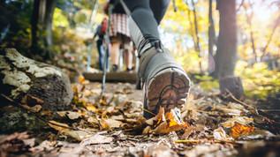 Why walking isn't just to make us warm.