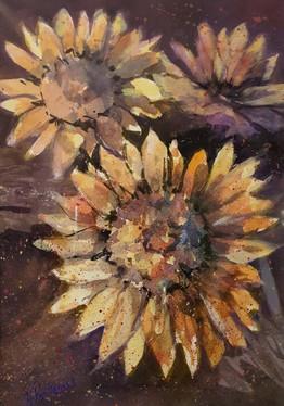 Val Porteous sunflowers.jpg