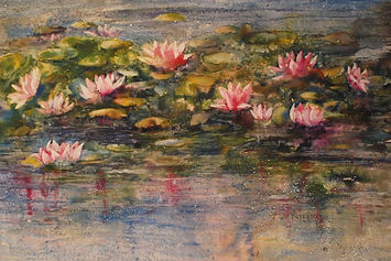 stewart water_lillies.JPG