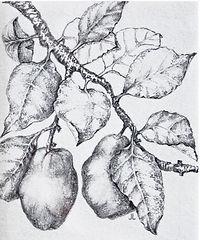 Joan Lopes AA Autumn Harvest.jpg