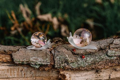 Floral Snail
