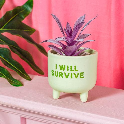 I will survive planter