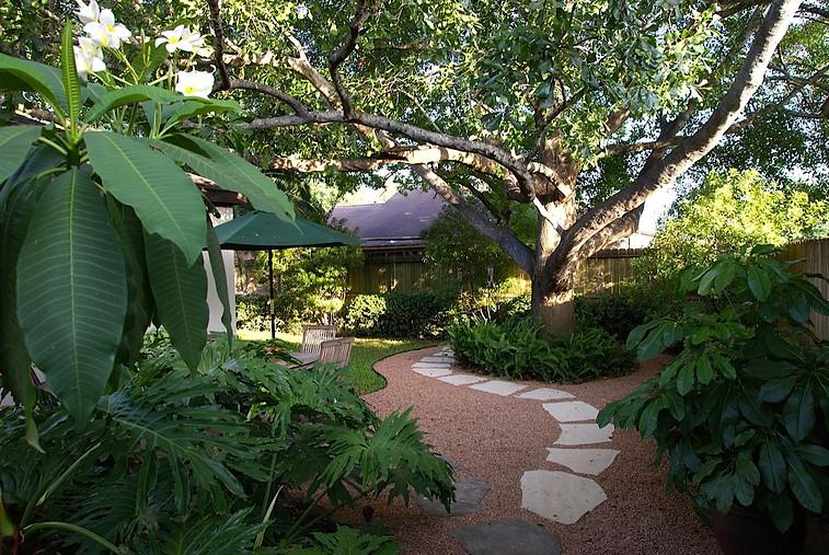 Houston Oasis, Path through tropicals
