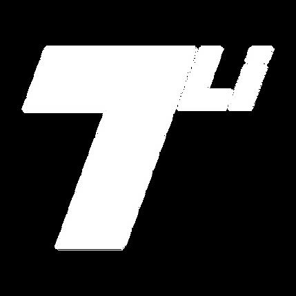 TerraLithium Logo