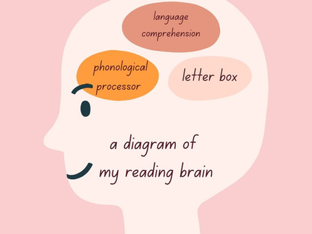 The Reading Brain: An Overview