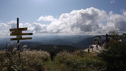 高杉山.jpg