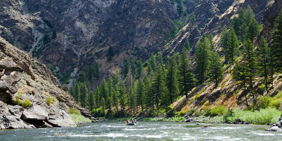 Middle Fork of the Salmon Mid Summer Raf