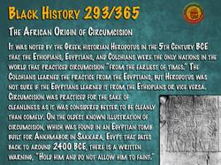 African Origin of Circumcision