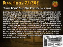 """Little George"" Slave Ship Rebellion"