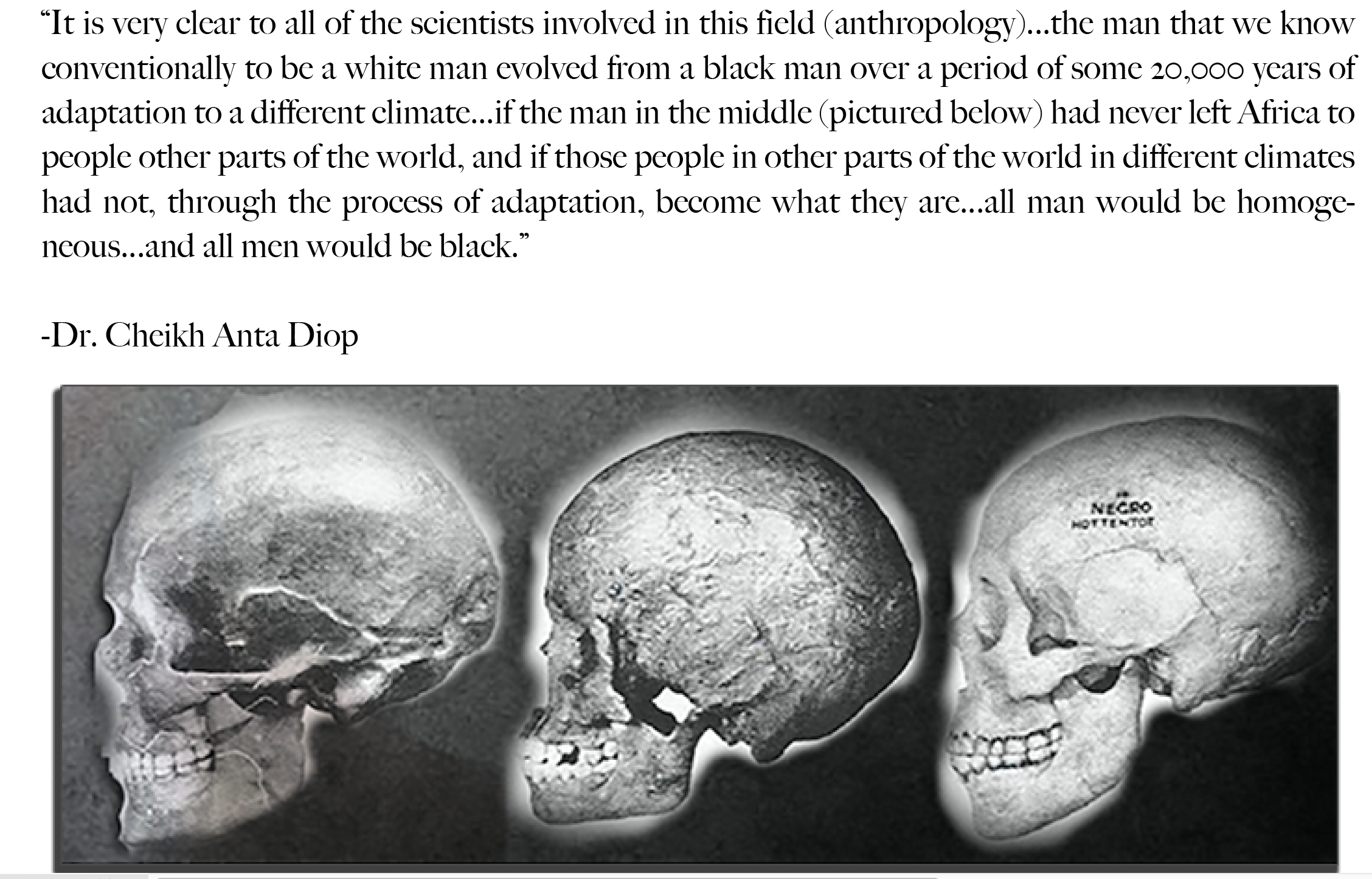 Diop Quote