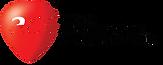 ACE-hi-res-logo-full-collection-CMYK-_Bl