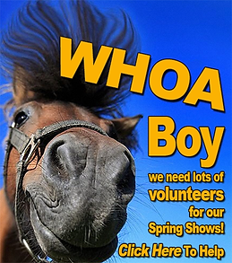 Whoa Boy Volunteer Flier Web D01 copy.pn