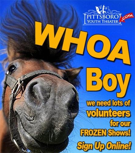 Whoa Boy Volunteer FROZEN WEBSITE Big D01.png