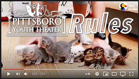 PYT RULES - Kitten Herding Vid FF D02.pn