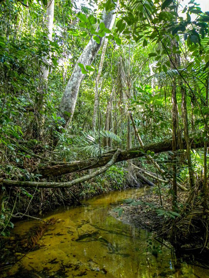 Córrego do Veado