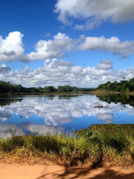 Reserva Natural Vale, Linhares.
