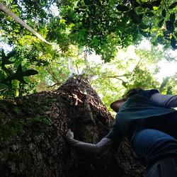e apaixone-se pelo que a natureza nos oferece.
