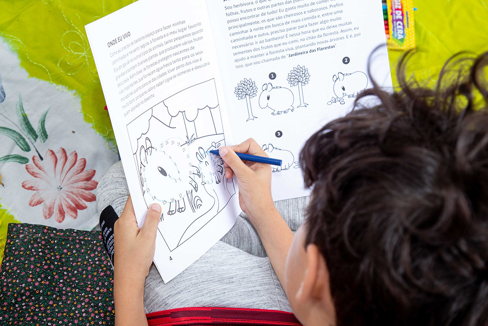Criança interagindo a revistinha Dona Anta e seus amigos da Floresta.