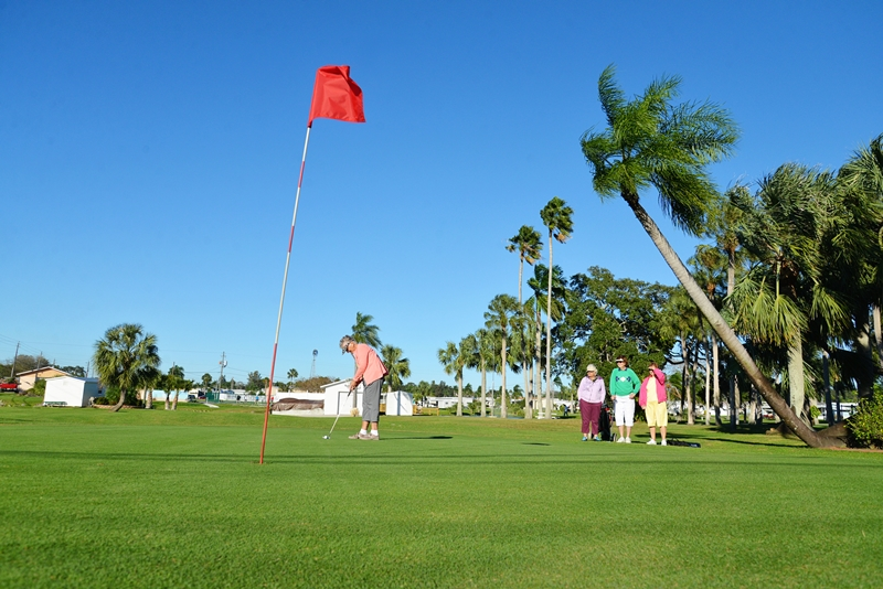 golf500