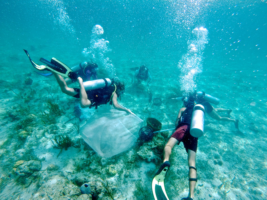 The coral reef restoration team uses nets to corral and capture some reef fish for tests in the wet labs back on campus.