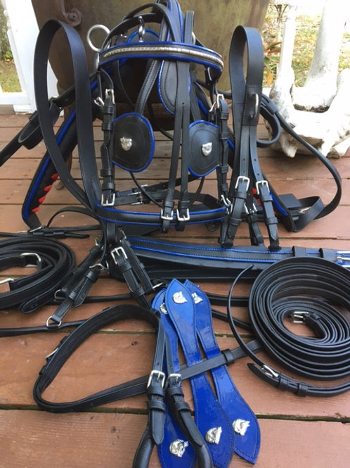 Black w Blue Trim Padded Cob Large Pony Driving Harness
