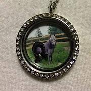 custom keepsake locket horse hair ribbon and photo