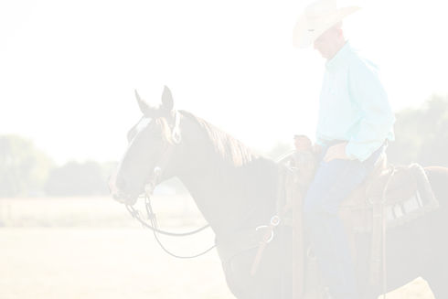 Cowboylook_edited.jpg